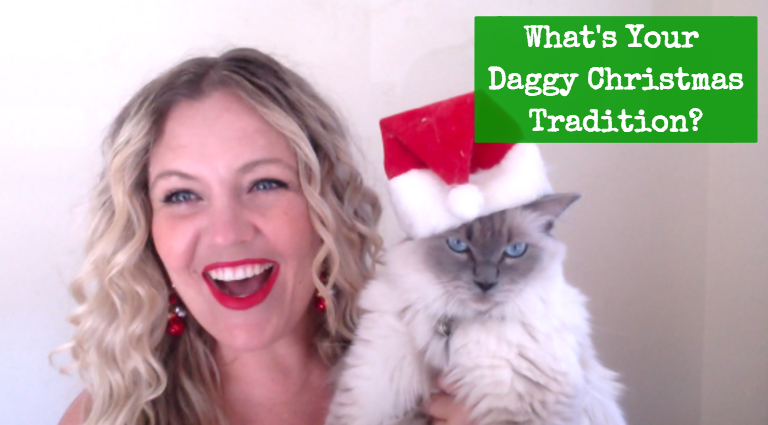 What's Your Daggy Christmas Tradition?